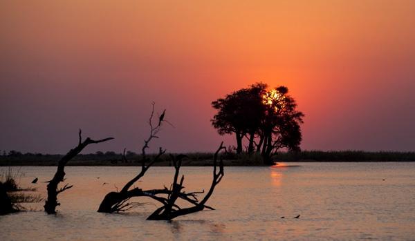 Couché de soleil sur la rivière Chobé