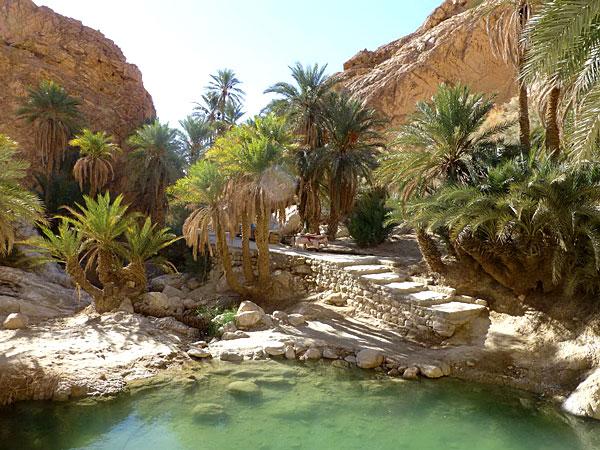 Une oasis à Oman