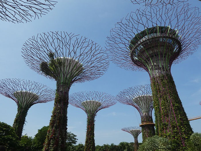 Spectaculaires infrastructures dans les Gardens of the Bay
