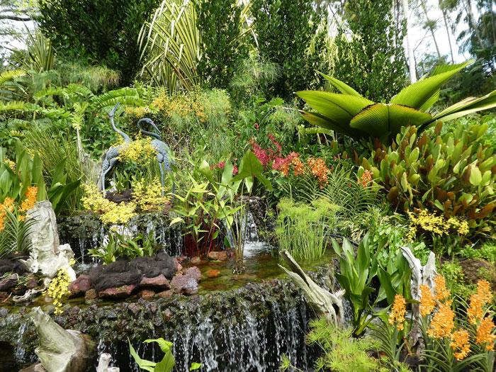 En balade à travers le jardin des orchidées